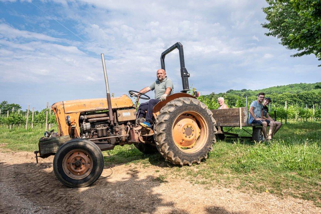 I viticoltori di Barchessa Loredan a bordo del carretto usato per la vendemmia delle uve IGT Colli Trevigiani sul Montello.