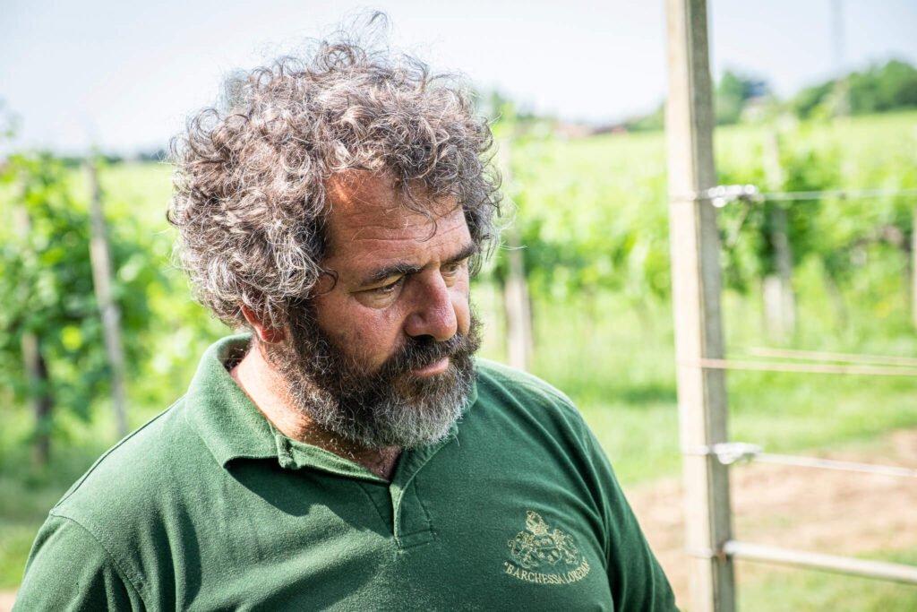Morris, con sguardo assorto, osserva i lavori di manutenzione dei filari piantati sui terreni del Montello.
